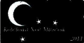 Noc Muzeów 2011, logo